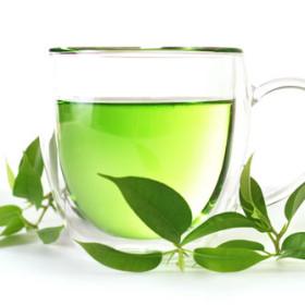 Фото: Приготовьтесь стать гением! Заварите себе чашечку зеленого чая.
