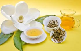 Фото: Натюрморт из желтого чая, заварника, чашки с чаем и цветка.