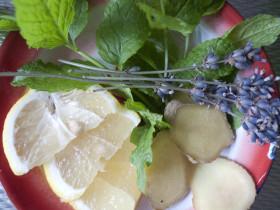 Фото: Добавки в чай — имбирь, лаванда, мята, лимон.